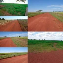 Procuro arrendamento de terras