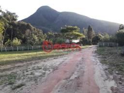 OPORTUNIDADE! Terreno plano com 3.000 m² em Bonsucesso
