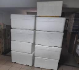Caixa Térmica de Isopor 120 litros GRANDE