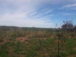 Fazenda Unai 129 hectares, expansão urbana, excelente para loteamento, indústria, galpões