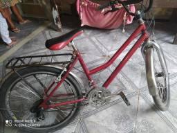 Vendo bicicleta Big