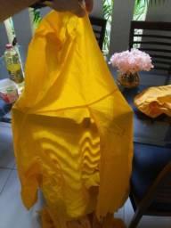 Vendo capa de chuva ( só o capus ) R$ 30,00