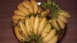 Vendo banana mação