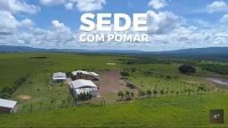 Fazenda de 1239 alqueires goiano de pecuária Em Mato Grosso