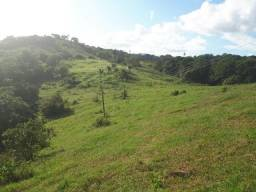 Fazenda em Igarassu-PE de 11,6 Hectares de 1.100.000,00 por 750 Mil Ref.476