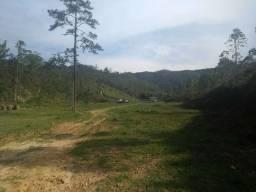 Sitio com 117 ha em Itajaí-Oportunidade de Investimento
