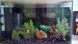 Título do anúncio: Vendo aquário de 65 litros