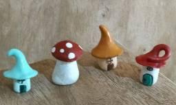 terrários cogumelos