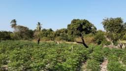 Vendo ou troco terreno em pindoretama