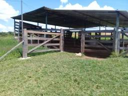 Linda Fazenda no Núcleo Rural Sussuarana Planaltina Df, 76 Hectares