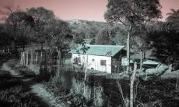 Terreno fazenda pasto p/ leite ou criação alugar arrendar sete lagoas perto Belo Horizonte
