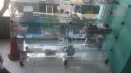 vitrine de amosta
