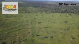 Fazenda no município de Porto Velho com 460 hectares