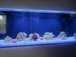 Aquário marinho 450 litros