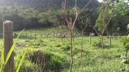 Fazenda com ótimo preço em Guarapari