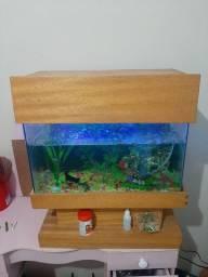 Aquário para peixes ? ?  completo com tudo funcionando