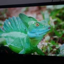 Monitor IPS Full HD 21,5 75hz