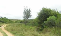 241 Ha - Fazenda na Região de Barbacena/Piedade do Rio Grande/MG - 1765