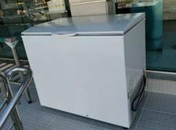 Freezer comercial gelopar com serpentina de cobre(novo) Alecs