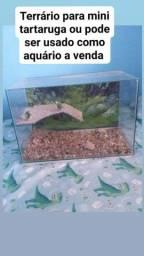 Venda de um terrário mas tabem.pode ser usado como aquário
