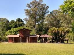 Sítio 3,0 Hectares - Santa Cruz do Pinhal - Taquara - RS