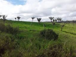 Fazenda de 133 alqueires