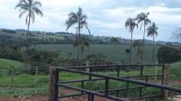 Fazendas na Região de Inhumas