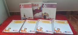 Livros didáticos 6°ano SIM- Sistema de Ensino