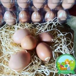 Ovos legitimamente caipira