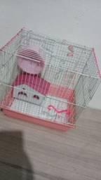 Casinha de hamster com uma fêmea e um macho
