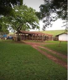 Fazenda na região de Lençóis Paulista - SP