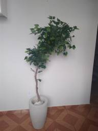 Árvore artificial de ficus