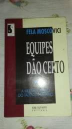 Livro Equipes Dão Certo. Fela Moscovici