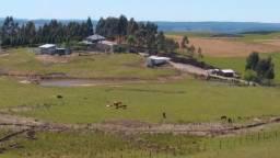 Área de Campo 41.0 Ha