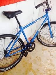 Bicicleta Perfeita - Aro 26