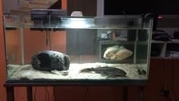 Fabricação de aquário