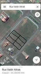 6 Terrenos Juntos em Araquari