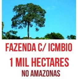 Fazenda com mil hectares com certificado do Icmbio no Amazonas, ler descrição do anuncio