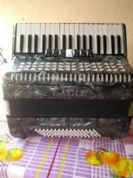 Vendo esta acordeon sanfona