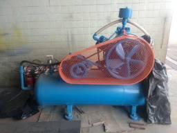 Compressor Wayne w900