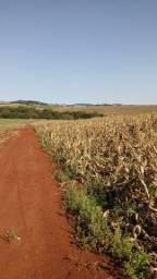 Fazenda 137 alqueires para lavoura com entrada e 10 anos para pagar