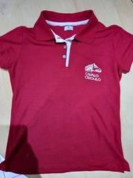 Camiseta Polo Feminina Cavalo Crioulo