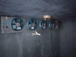 Câmara fria cubos de.gelo