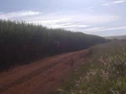 Título do anúncio: Fazenda a venda a 2 km do município de Santa juliana MG