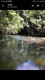 300 Hectares na beira do Igarapé a 55km de Macapá
