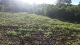 Título do anúncio: Excelente Sitio/Área Rural Com Sanga de 1 Hectare em Taquara