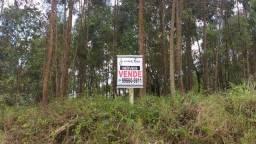 Chácara em Bocaiúva do Sul - 20.000 m²