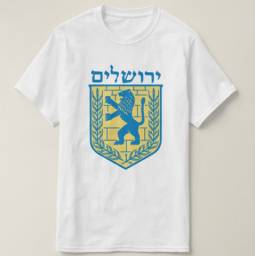 Camiseta Camisa Bandeira de Israel Jerusalém Cidade Santa Linda