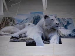 Quadro decorativo Leão branco