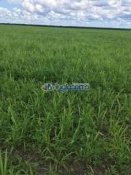 Fazenda à venda, 626,86 hec por r$ 15.775.000 - centro - nova mutum/mt